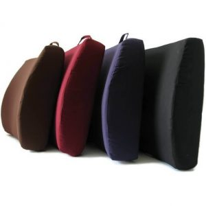 Back Support Cushions Sold By ENTAP South Africa